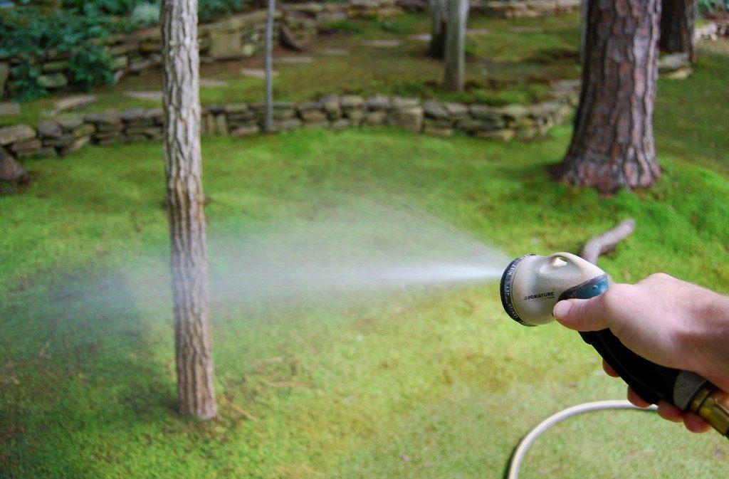 handwater-copy-1024x673-8309483