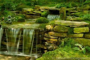 kens-n-o-photo-300x199-3999627