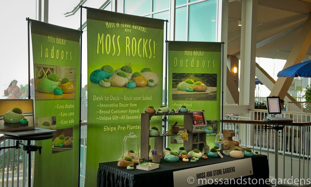 moss-rocks-2-4312543
