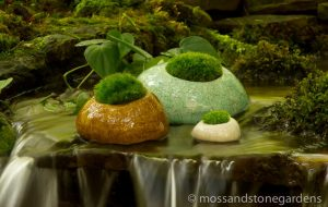 water-and-moss-rocks-3660384