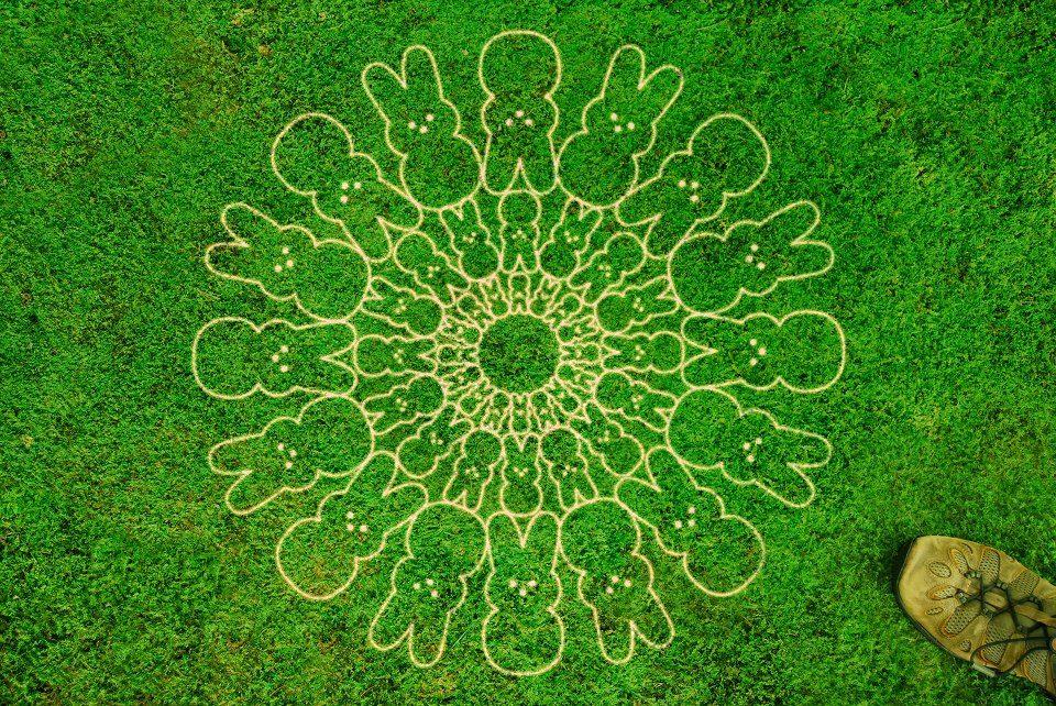 peep-circles-1058657