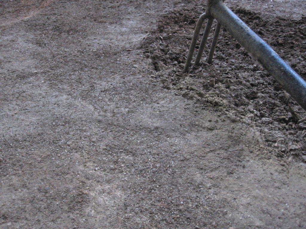 soil-scratch-1024x768-9998650