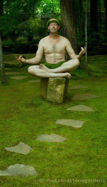 moss-and-stone-gardens-yogi-9080288