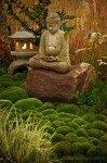 buddha-99x150-2492806